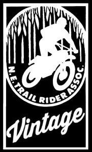 NETRA Vintage Logo